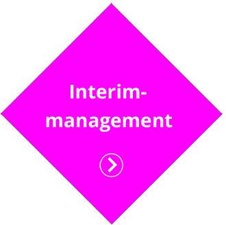 IMSUS Interim-management