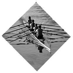 Teamcoaching IMSUS B.V.